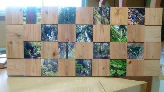多摩の自然の写真とスクエアウッズを組み合わせた展示品↑